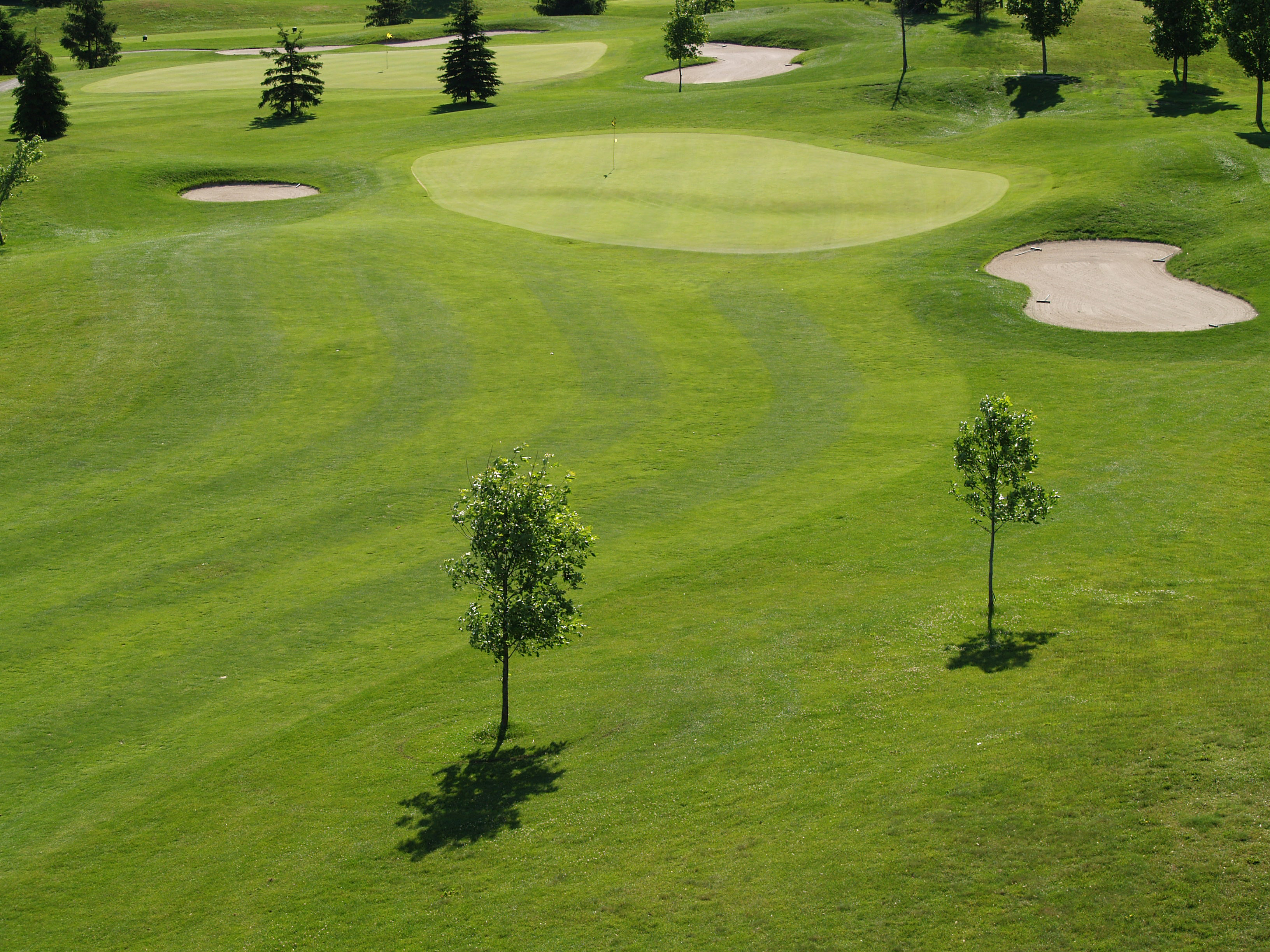 Pine Knot Golf & Country Club - Middlesex - Golf Discounts ...