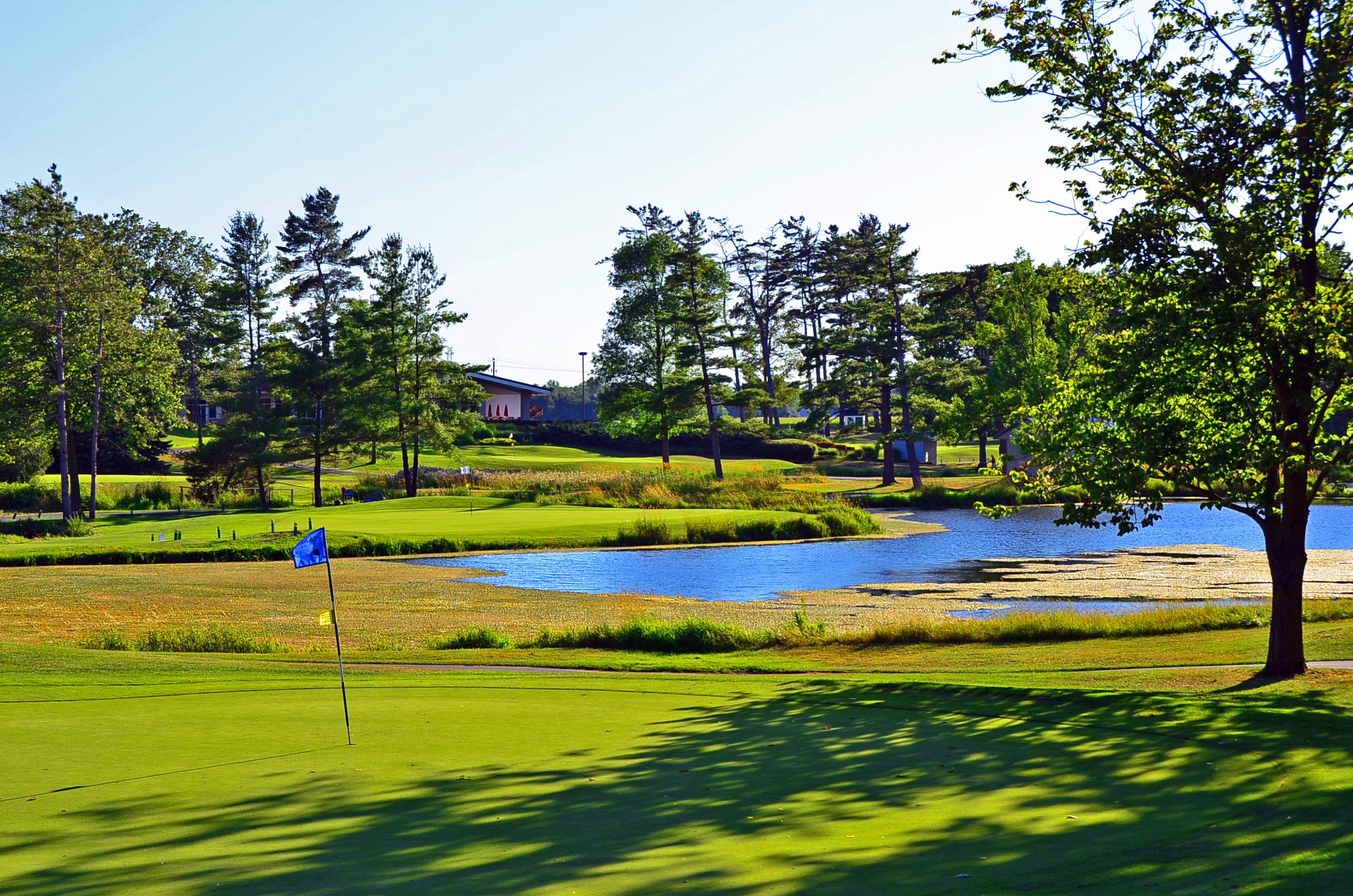 Century Pines Golf Club - Hamilton - Golf Discounts and ...