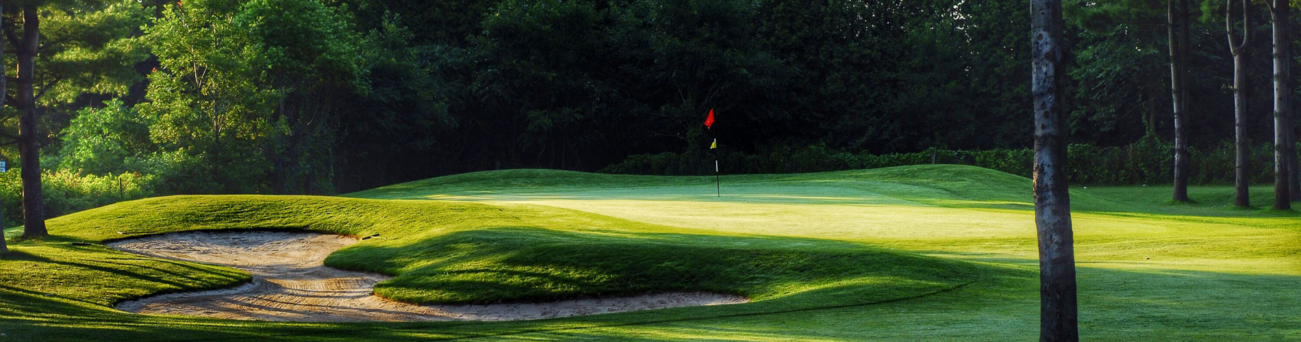 2018 Golf Carts >> Carlisle Golf Club - Hamilton - Golf Discounts and Coupons on Green Fees